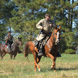 Heat Of The Battle by Roy Walter - People Group/Corporate ( animals, civil war reenactment, horses )