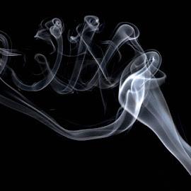 Ribcage by Gregg Pratt - Abstract Patterns ( smoke )