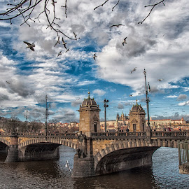 Prague  by Nemanja Jacimovic - Landscapes Travel ( sky, tourism, travel, bridge, prague, river )