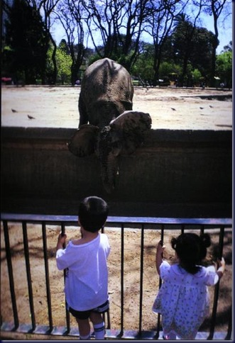 En el zoológico 03