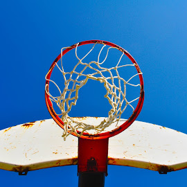 Hoops and Blue Sky by Teresa Francis - Sports & Fitness Basketball ( basketball, sky, blue, backboard, sports, basket, goal )