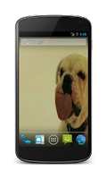 Screenshot of Dog licking screen HD LWP
