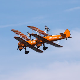 Breitling Wingwalkers by Jules Ratcliff - Transportation Airplanes