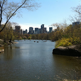A river runs to it.. Well not really by Alex Curry - City,  Street & Park  Skylines ( Urban, City, Lifestyle )