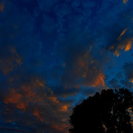 This Concept Reality by Vince Scaglione - Landscapes Weather ( clouds, concept, sky, sunset, silhouette, sundown, weather, horizon, landscapes, reality, dusk )