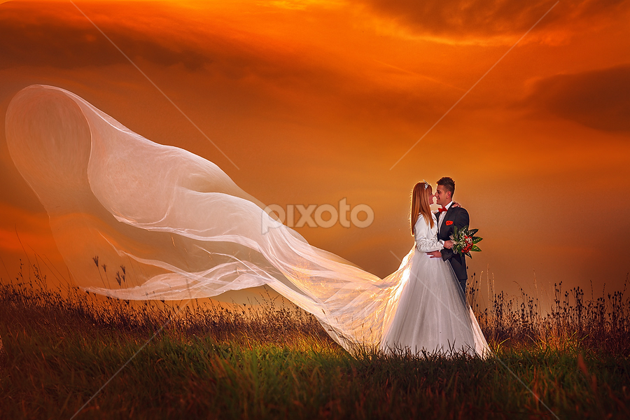 wedding by Dejan Nikolic Fotograf Krusevac - Wedding Bride & Groom ( aleksandrovac, kraljevo, vencanje, fotografia, pozarevac, svilajnac, subotica, snasa, krusevac, svadba, kragujevac, vrnjacka banja, fotograf,  )