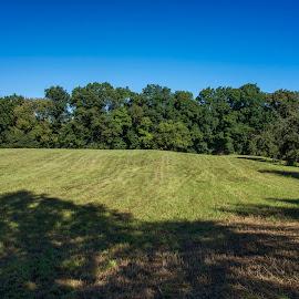Morning Field by David Stone - Landscapes Prairies, Meadows & Fields ( farm, field, blue sky, hay field, cricket hearth, grass, recently hayed grass, trees )