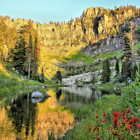 Bloomington Lake by Roxie Crouch - Landscapes Mountains & Hills ( water, idaho, paint brush, reflection, bloomington, lake, pine trees,  )