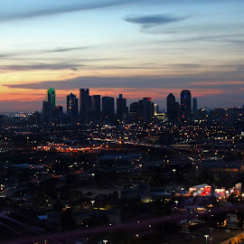 DALLAS FROM AFAR by Fred Regalado - City,  Street & Park  Skylines