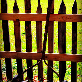 Old lawn Mower by Linda Blevins - Artistic Objects Antiques ( fence, old, color, fall, leaves, antique )