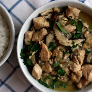 Turkey Fricassee Recipes