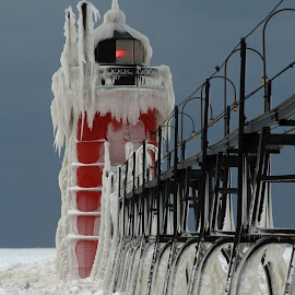 South Haven Lighthouse on Ice by Carol Cooper - Buildings & Architecture Public & Historical ( winter, red, ice, lighthouse, pier )