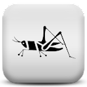 Crickets icon