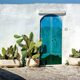 OSTUNI by Irene Martinelli - Buildings & Architecture Architectural Detail ( apulia, cacti, blue, puglia, white, door, italy )