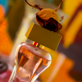 Parfume with rose by Horatiu Almasan - Digital Art Things ( rose, parfume, bottle, flower, dry flower )