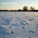 Snowy Scenes - Live Wallpaper icon