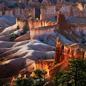 Sunset in Bryce NP by Jacob Padrul - Landscapes Sunsets & Sunrises ( red stones, national park, sunset, red rock, bryce, national parks, bryce canyon, Earth, Light, Landscapes, Views )