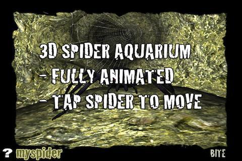 蜘蛛在3D水族館