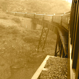 White Pass Railroad  by Daniel Bottoms - Transportation Trains ( railroad, alaska, bridge, white pass, historic,  )