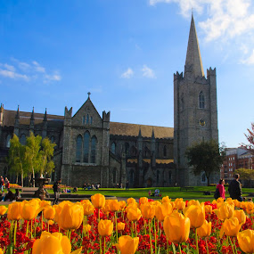 St. Patricks Cathedral,  Dublin by Peter Andrusyszyn - Buildings & Architecture Places of Worship ( photo by pete andrusyszyn, ireland, ireland trip, dublin, st patricks )
