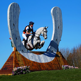 White Horses Can Jump by Sue Lascelles - Novices Only Sports ( lincoln horse trials, eventing, horse shoe, horse, cross country, jump )