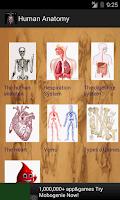 Screenshot of Human Anatomy