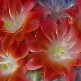 shaggy flowers by Leslie Collins - Digital Art Abstract ( abstract, red, digital art, art, stems, flowers )