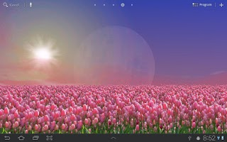 Screenshot of Tulip Field Live Wallpaper