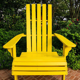 Yellow Chair with Chameleon by Steve Munford - Artistic Objects Furniture ( chair, sabot, artistic furniture, yellow, chameleon )