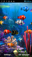 Screenshot of Galaxy Aquarium Live Wallpaper