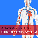 Anatomy - Circulatory System icon