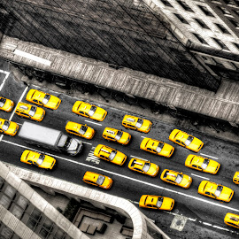 yellow! by Hiro Nakajima - Transportation Automobiles ( automobiles, yellow cab, new york city, nyc )