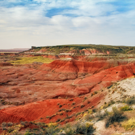 Painted Desert in Spring by Michael Buffington - Landscapes Deserts ( orange, desert, colorful, green, yellow, landscape, spring, environment, red, nature, blue, arizona, painted desert, natural,  )