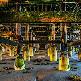 Pacific Beach Pier, CA, USA by Steve Griffiths - Buildings & Architecture Bridges & Suspended Structures ( sand, seaweed, sea, pier, beach )