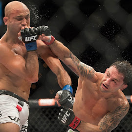 Frankie Edgar throwing a punch at BJ Penn.  The Ultimate Fighter 19. by Mike Bacos - Sports & Fitness Other Sports ( bj penn, ufc, frankie edgar, mma )