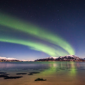 Stars, and long aurora by Benny Høynes - Landscapes Starscapes ( northernlight, stars, aurora, beach, norway )