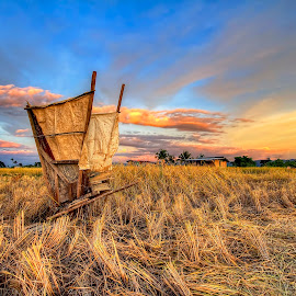 Hard work of a farmer by Johan Wan - Landscapes Prairies, Meadows & Fields