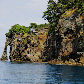 Mayr Island NZ  by Farhad Malikzad - Landscapes Caves & Formations ( holiday, mayor isand, hole in rock, cave, landscape )