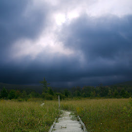 Cranesville Swamp Before the Storm by Glen Fortner - Landscapes Prairies, Meadows & Fields ( nature, cranesville, west virginia, nature conservancy, western maryland, swamp )