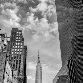 New York, New York by Rafael Aguilo - City,  Street & Park  Street Scenes ( manhattan skyline, ambient light, 34 street, empire state building, new york city, arquitecture,  )