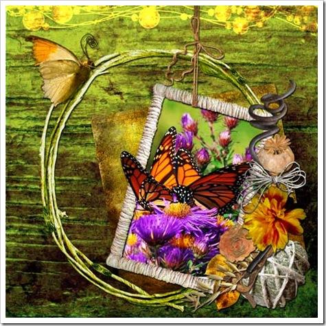 TM_MSS_DD_Rk_QP2_Butterflie