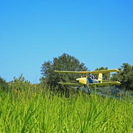 Spraying Sugarcane by Ron Olivier - Transportation Airplanes ( spraying sugarcane )