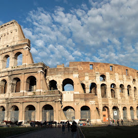 Colosseo by Patrizia Sapia - Buildings & Architecture Statues & Monuments (  )
