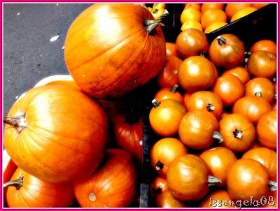 pumpkins for halloween!