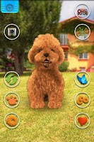 Screenshot of Talking Teddy Dog