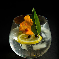 The Ultimate Gin & Tonic