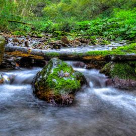 by Siniša Biljan - Nature Up Close Rock & Stone