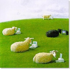 LaptopSheep