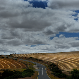 A road runs through by Martha van der Westhuizen - Landscapes Prairies, Meadows & Fields ( farmfields, overberg, harvested, highway, national road, n2, western cape )