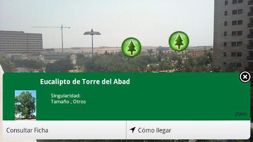 Árboles y Arboledas. Andalucía